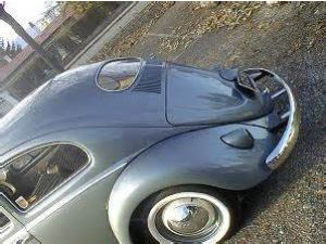 photo Volkswagen Coccinelle / beetle [Ovale]